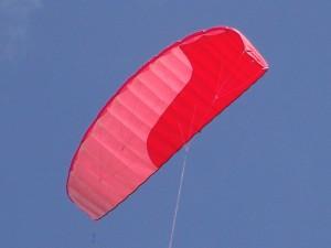 Wings JoJo 28+